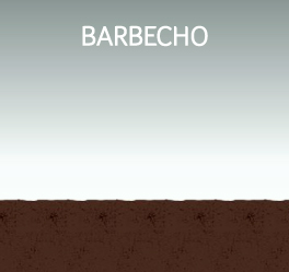 Barbecho